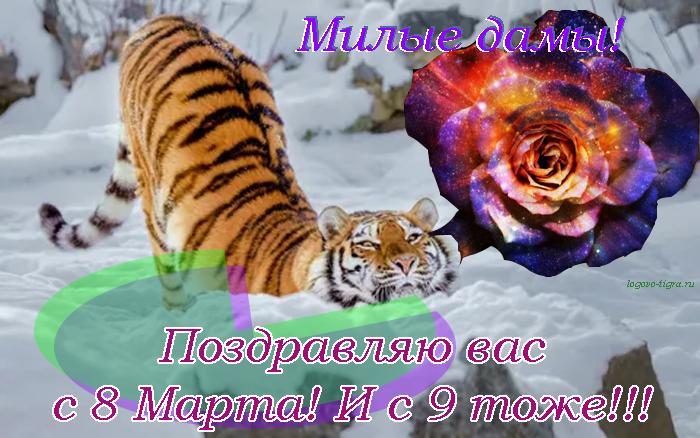 Изображение: http://antigun.savesoul.ru/misc/8m/2021.png